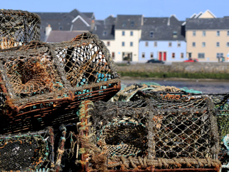 Stacked lobster traps with harbourside cottages in a row behind